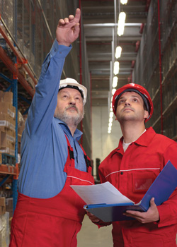 Organizational and OSHA Audits