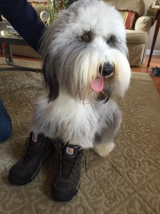 howie boots